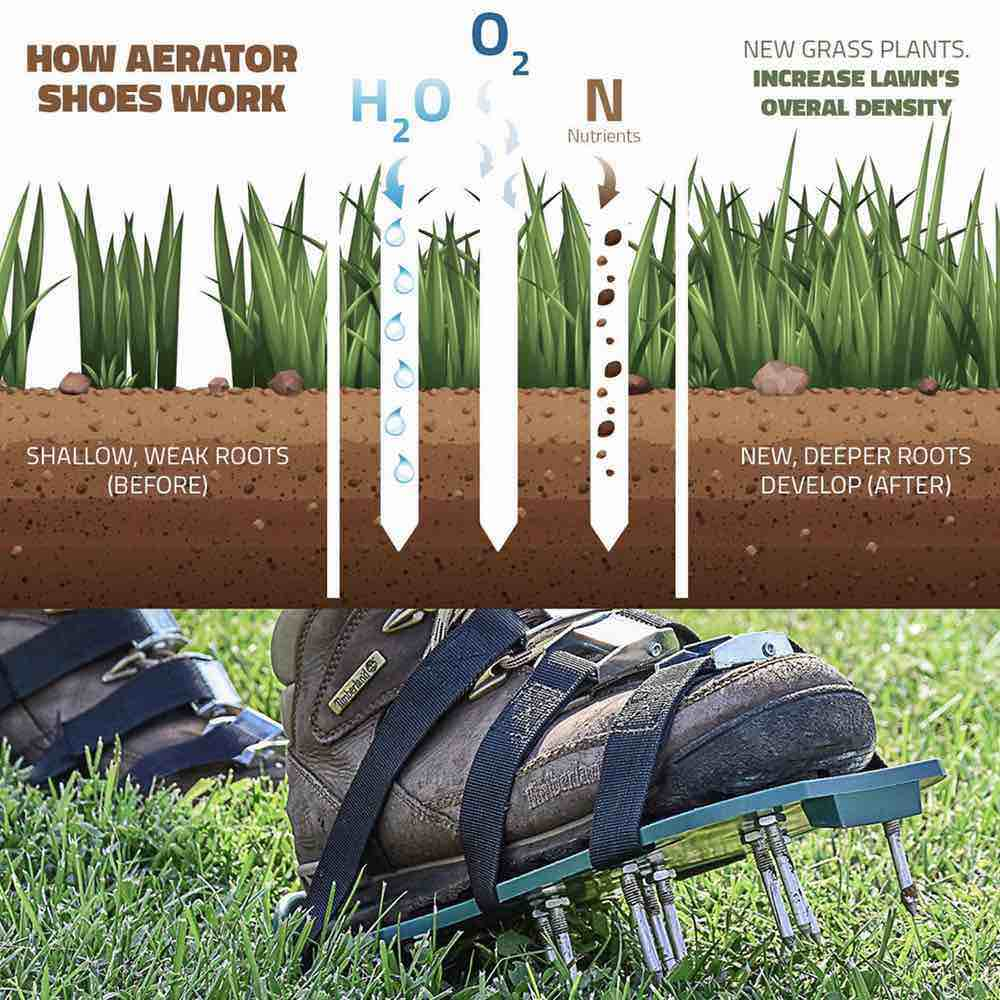 yard aerator shoes