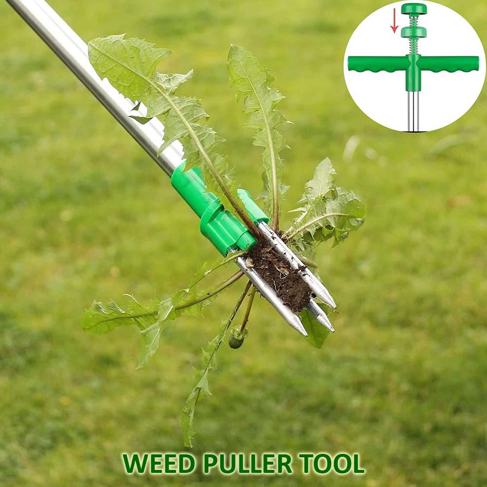 weed puller